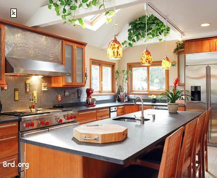 modern kitchen with wooden cabinets and plants