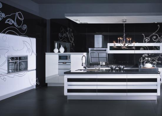 modern kitchen cabinet in black and white-design ideas