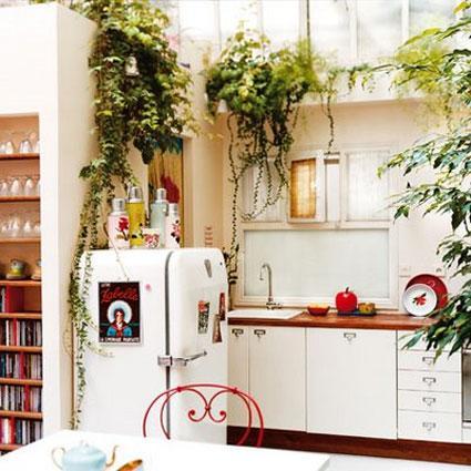 weiße Küche mit Pflanzen und Kräutern