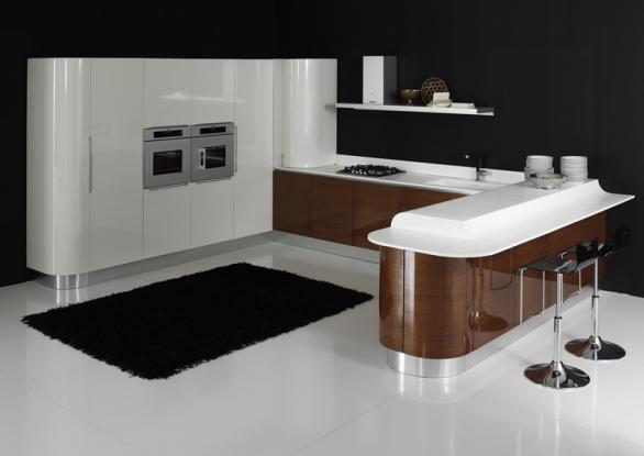 luxury appliances and modern kitchen furniture