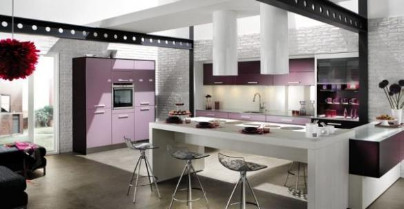 modern and contemporary kitchen design-purple cbinets-decoration
