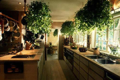 """green"" kitchen design-ideas"